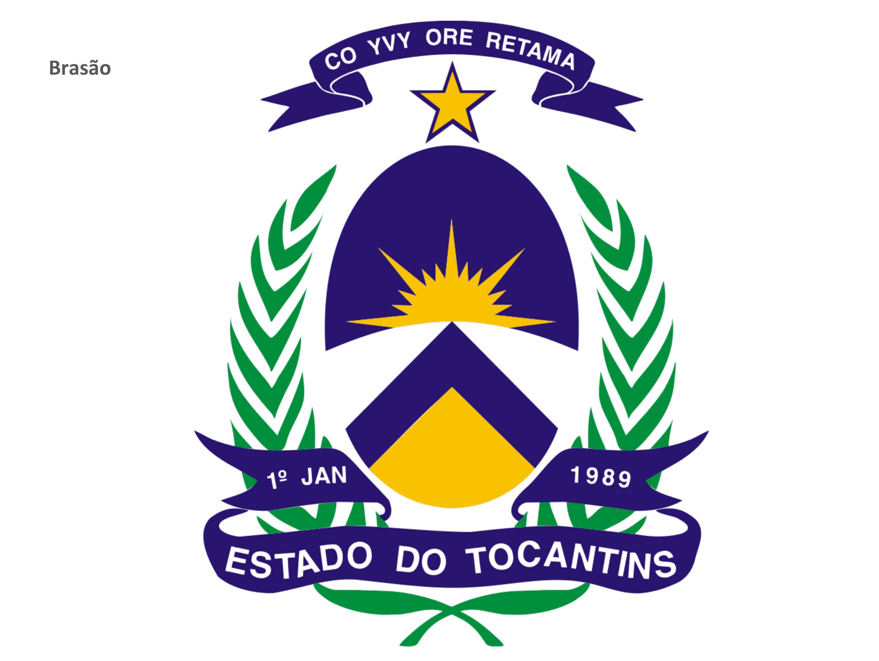 brasaoPalmas